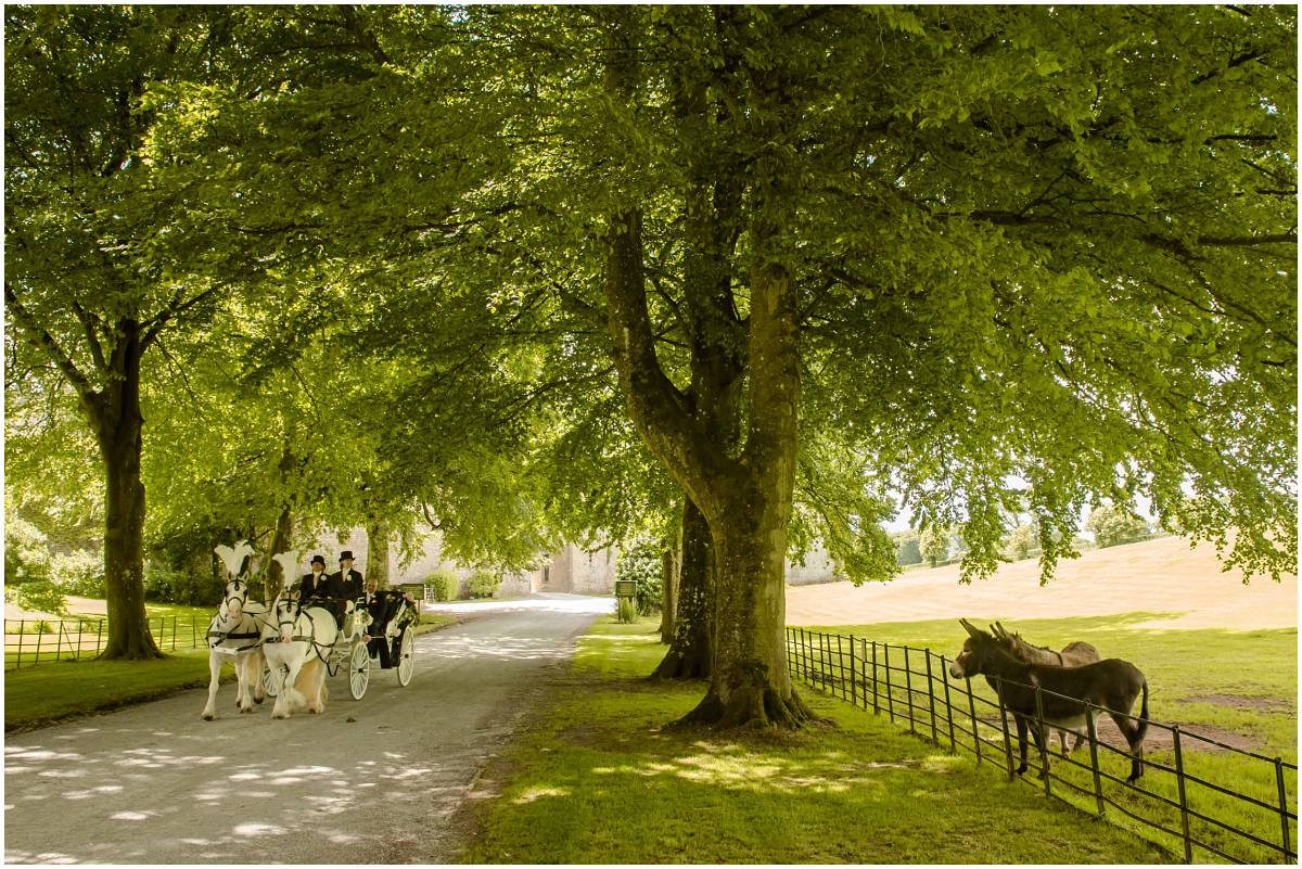 Horse drawn carriage at Clearwell Castle